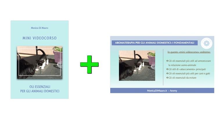 Oli Essenziali per gli animali domestici: mini videocorso + slide